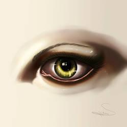 Eye -Digital Art by SegmaKun