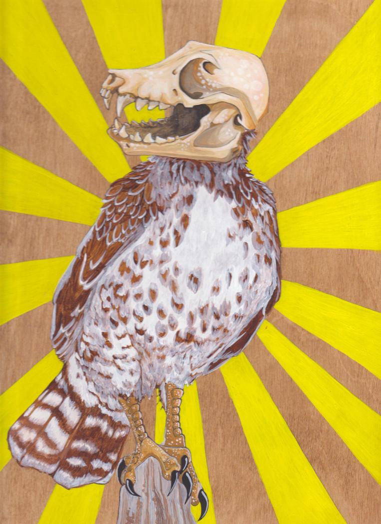 Fox Hawk by megarea