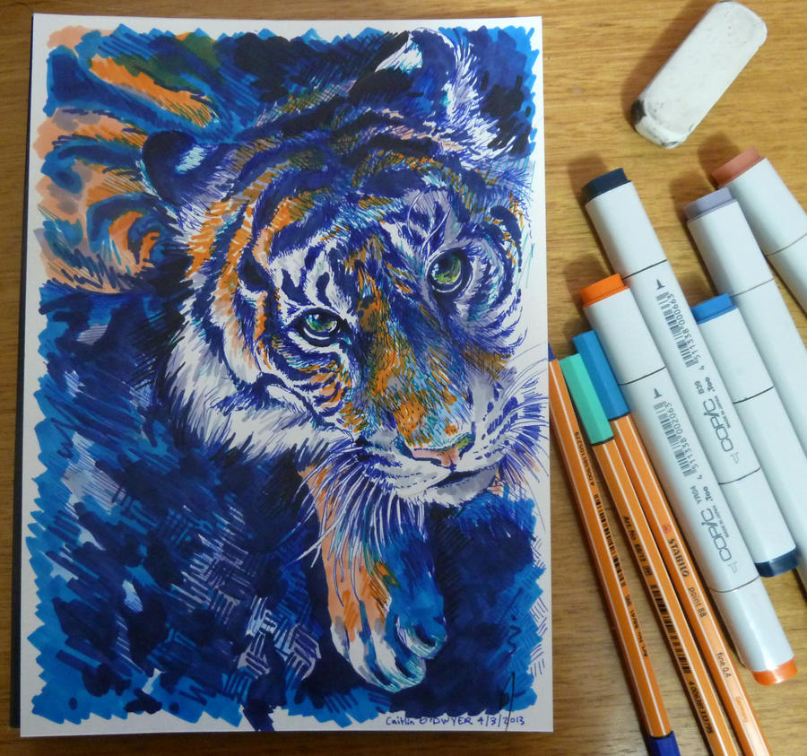Tiger by BooYeh