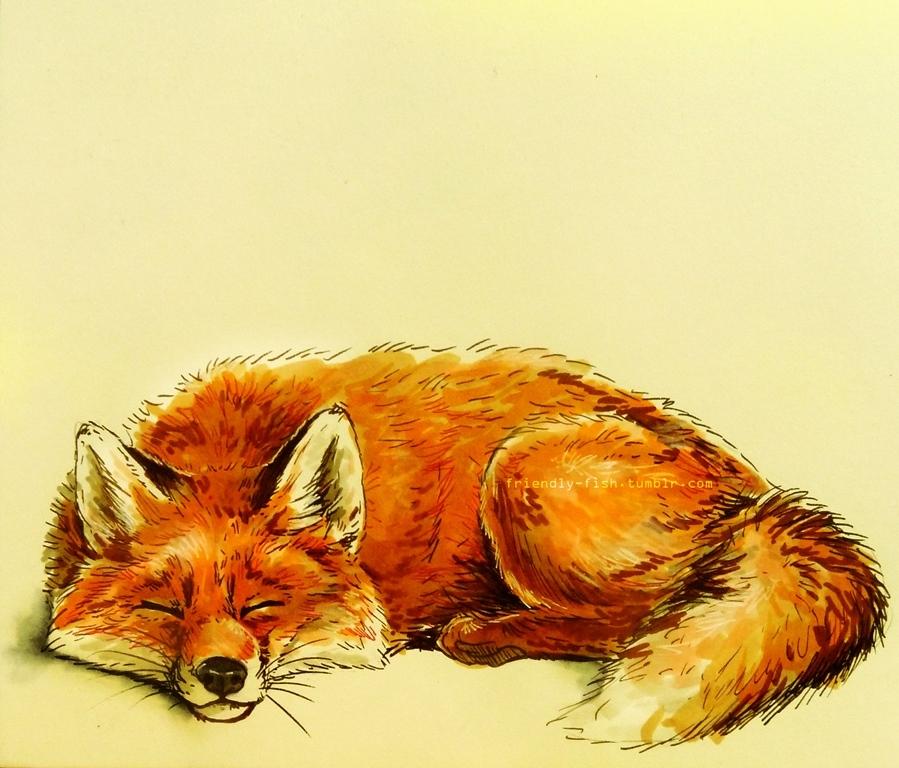 Fox by BooYeh on DeviantArt