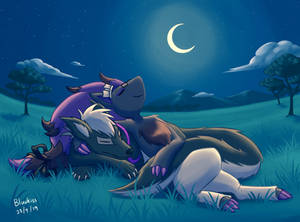 Commission: Chilling at Night