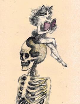 Cat reads on skeleton