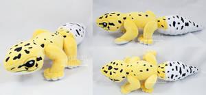 Benan the leopard gecko