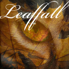 The Heart Of A Warrior - Portal Warrior_Cats___Leaffall_by_Meadowsong544