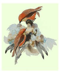 flycatcher by paladinknight
