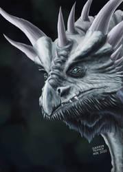 Dragon Nov 2020 by Darren Pepper