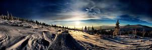 Winter by auroradenight