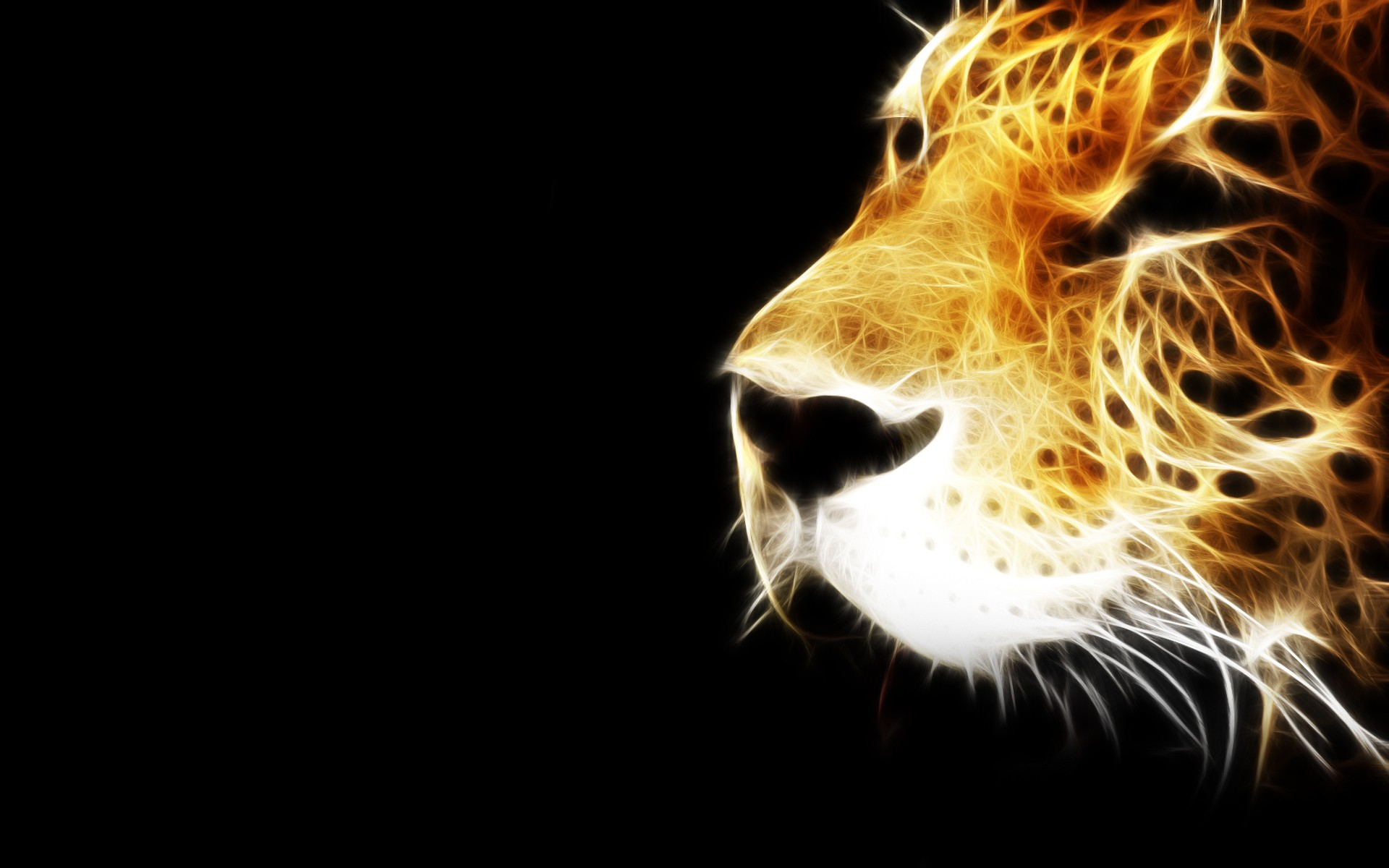 199 best images about Neon <b>Fractal Animals</b> on Pinterest