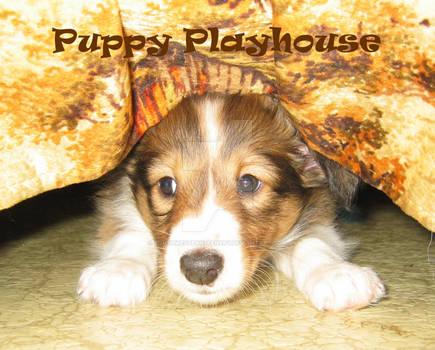 Puppy Playhouse