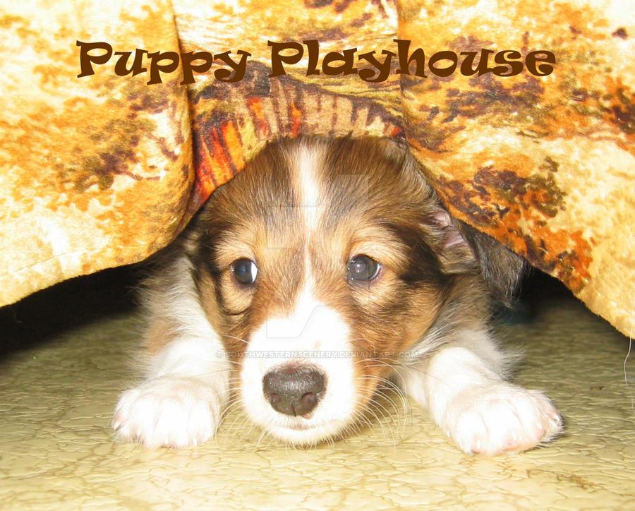 Puppy Playhouse by southwesternscenery