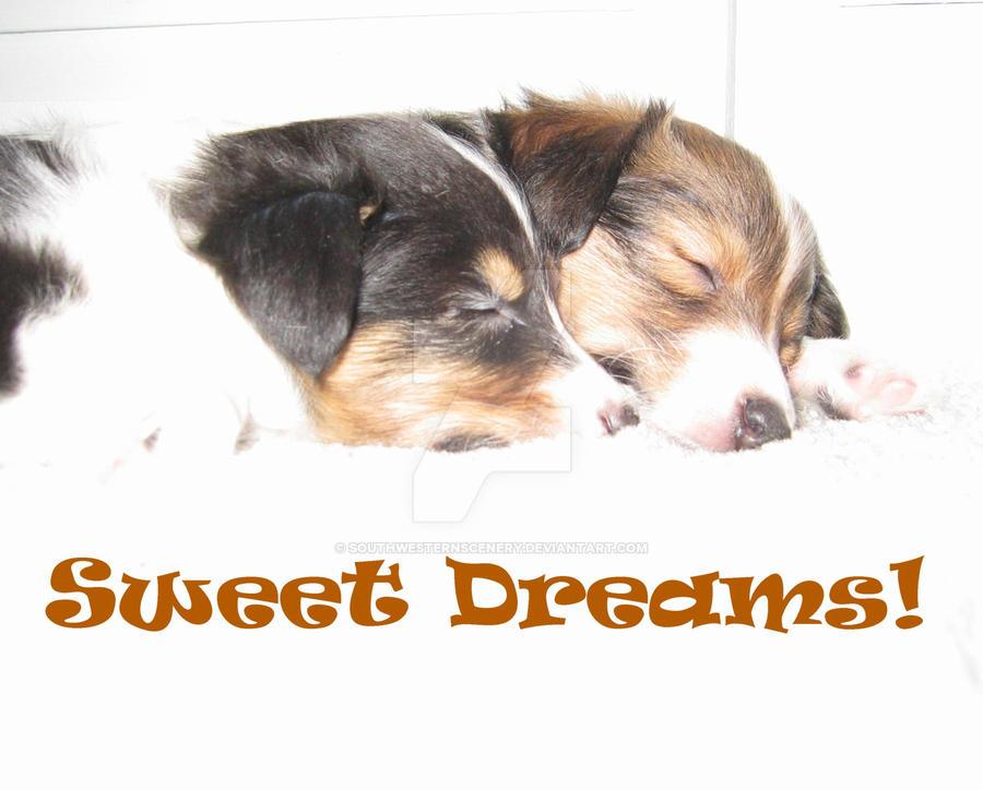 Sweet Dreams by southwesternscenery