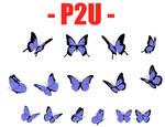 P2U  - Butterfly Lineart by Elegantooo