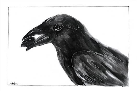 Raven - Day 5 -