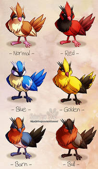 Pidgey variations