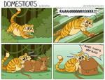 DomestiCats - Wild tiger