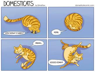 DomestiCats - Positions by ShinePawArt