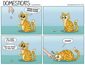 DomestiCats - Cat sight by ShinePawArt