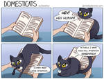DomestiCats - Reading