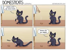 DomestiCats - You eat that? by ShinePawArt