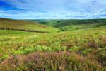 the exmoor valley