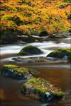 autumnal hop scotch by sassaputzin