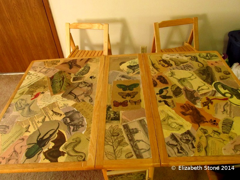 Historical Biology Collage Table by Libis