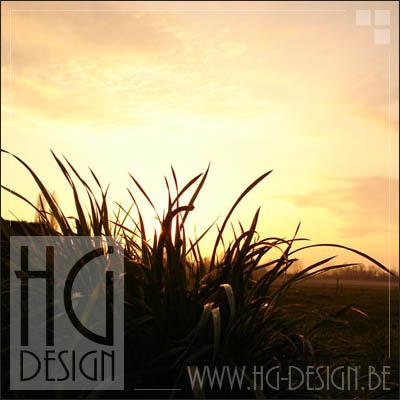HG-Design's Profile Picture