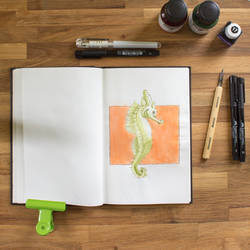 Inktober | Seahorse by photograph1c