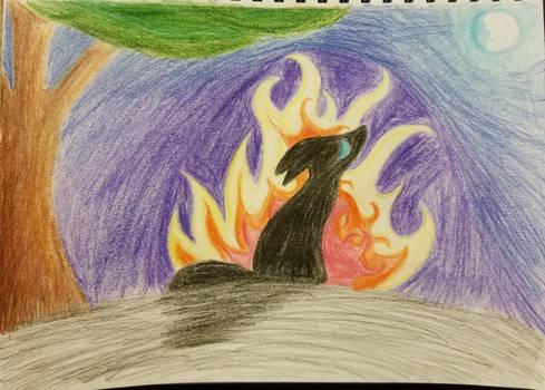 The Fire I Began