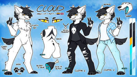 Cloud Ref | Commission by LYNX3000