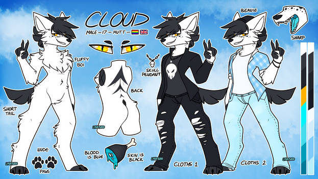 Cloud Ref   Commission by LYNX3000