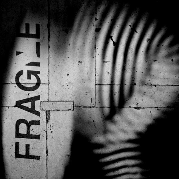 Fragile by Sei-Zako