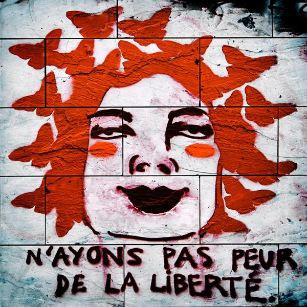 N'ayons pas peur de la Liberte by Sei-Zako