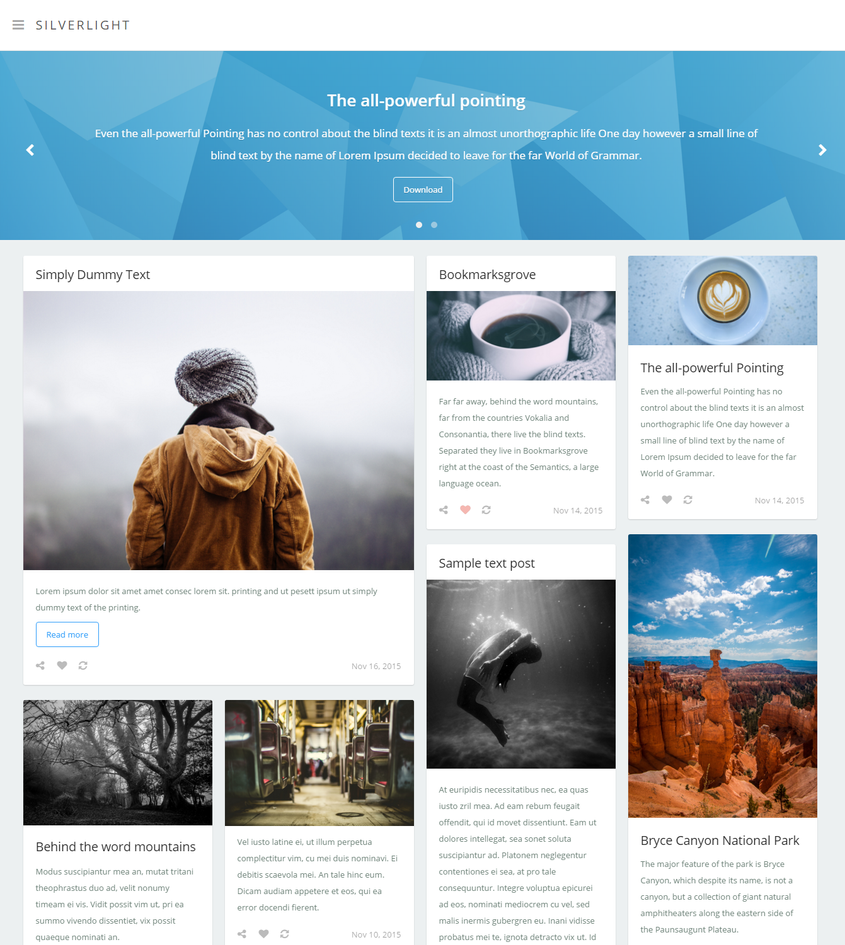Silverlight - Tumblr Theme by Festus911