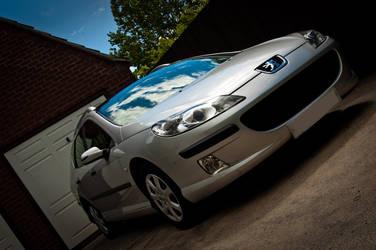 Car 5-2:19 Peugeot 407 SW by villarule