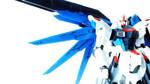 RG 1/144 Freedom Gundam by D-emonat-A