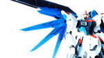 RG 1/144 Freedom Gundam