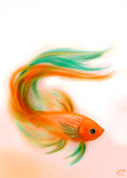 Betta sketch 2-17-13 by Majoh