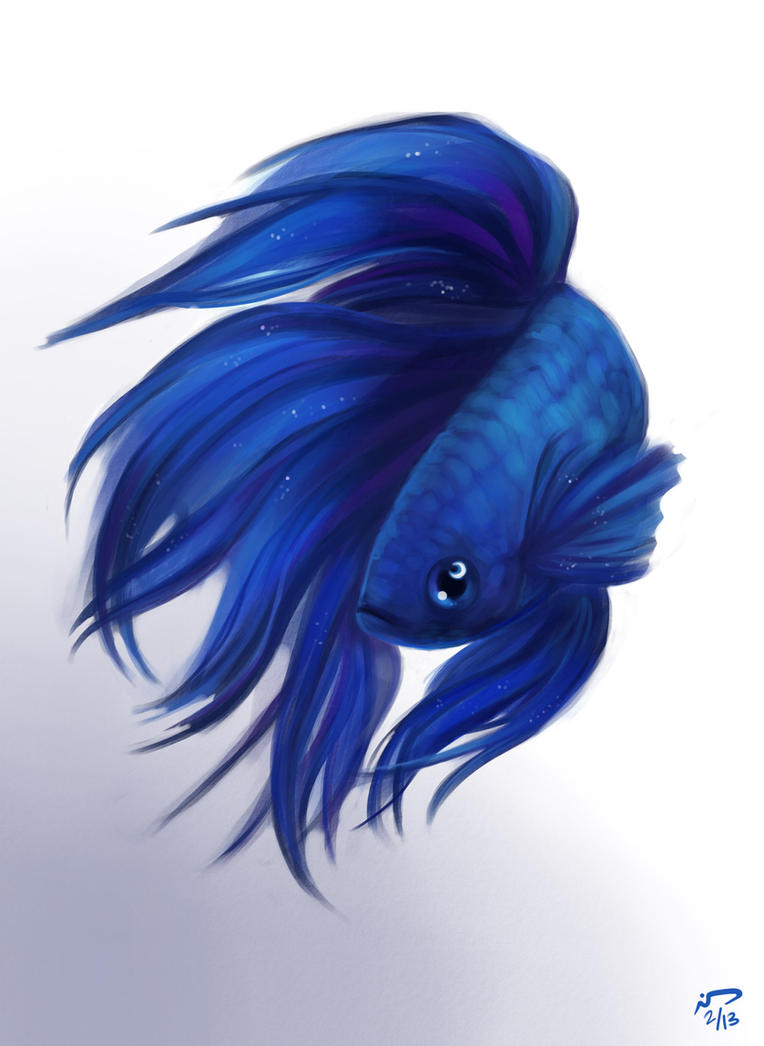Betta fish (or Siamese) suffers from a wide range of infections and diseases. Learn how to prevent, diagnose and treat common betta fish infections and diseases. See also the best medication for sick betta.