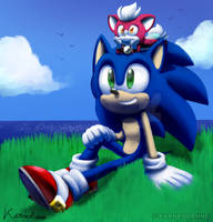 Sonic and Chip looking at the Sky by Karneolienne