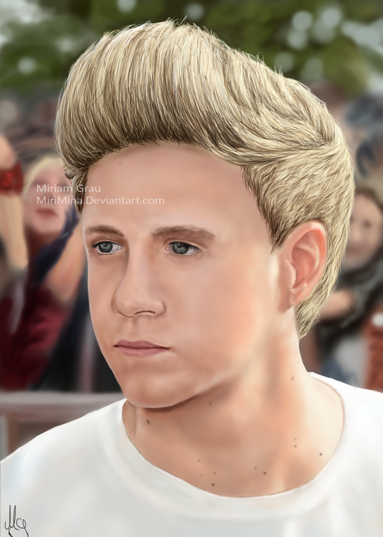 Niall Horan Hair 2014