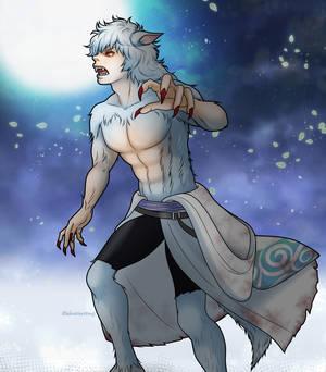 Werewolf xx Gintoki xx silver wolf