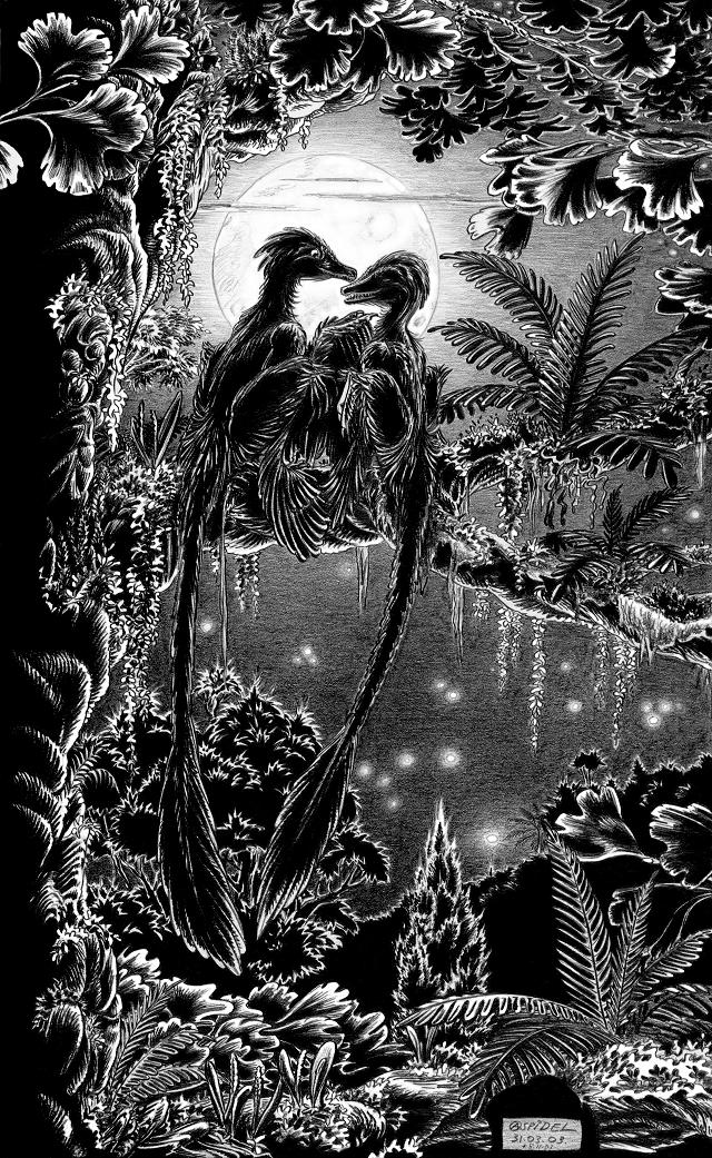 Microraptor-gui-noct-A by aspidel
