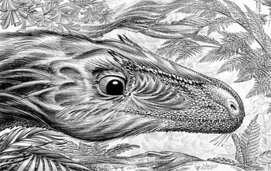 cf-Sinosauropteryx-A by aspidel