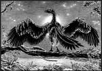 Archaeopteryx-lithographica-A