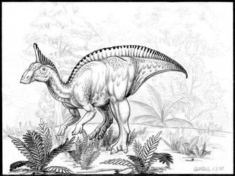 Tsintaosaurus-spinorhinus-A by aspidel