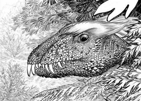 Daemonosaurus-chauliodus-A