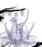 Coelophysis-bauri-juv-A