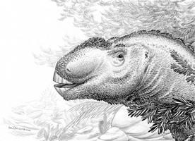 Aralosaurus-tubiferus-A by aspidel