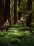 Centaurs in the glen